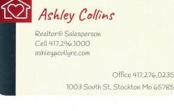 Ashley Collins: Realtor